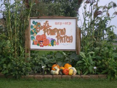 Gail's Pumpkin Patch